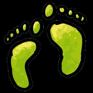 Groene Voetstappen in…